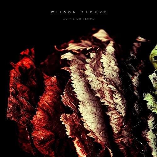 پیانو آرام بخش Au fil du temps اثری از Wilson Trouvé