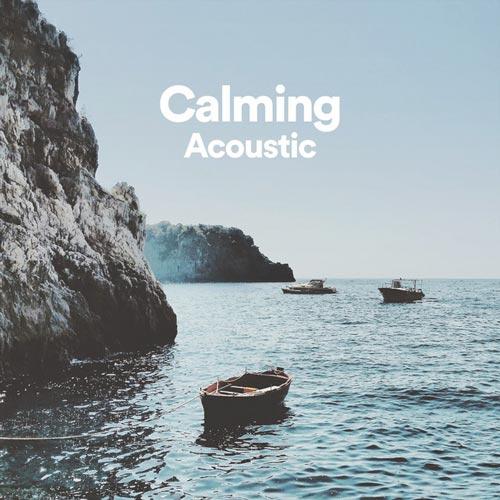 گیتار آکوستیک آرام بخش (Calming Acoustic)