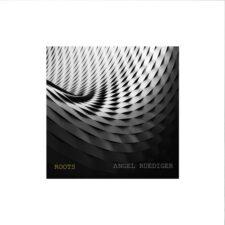 ریشه ها ، موسیقی پیانو آرامش بخش اثری از آنجل رودیگر
