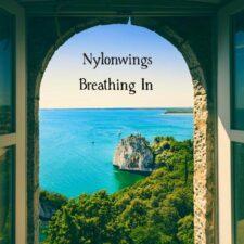 نفس کشیدن ، موسیقی گیتار آرام و دلنشین از نایلونوینگس