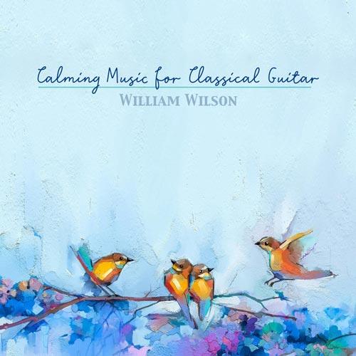 موسیقی آرام بخش برای گیتار کلاسیک با اجرای ویلیام ویلسون