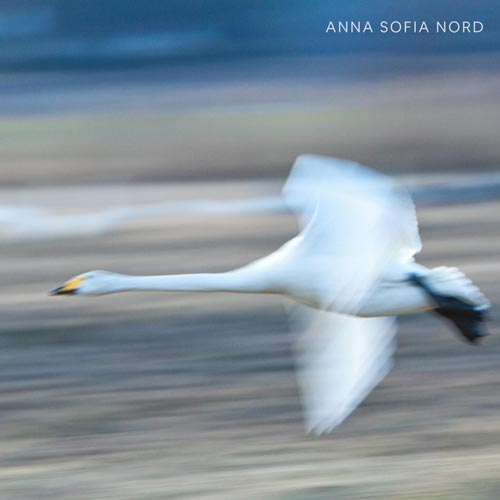 اشتیاق ، موسیقی پیانو آرامش بخش اثری از آنا صوفیا نورد