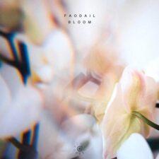 شکوفه ، موسیقی الکترونیک ملودیک و ریتیمک از فودایل