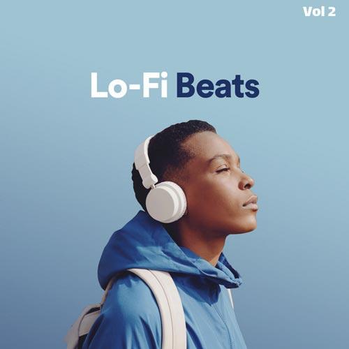 پلی لیست بیت های لو فای سری دوم (Lo-Fi Beats Vol 2)