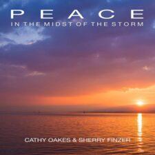 آرامش در میان طوفان ، فلوت آرام و صلح آمیز از شری فینزر
