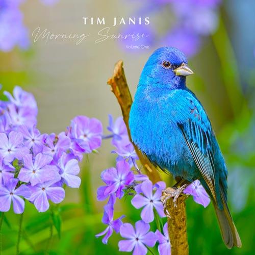 طلوع آفتاب صبحگاهی ، موسیقی پیانو صلح آمیز و آرامش بخش از تیم جانیس