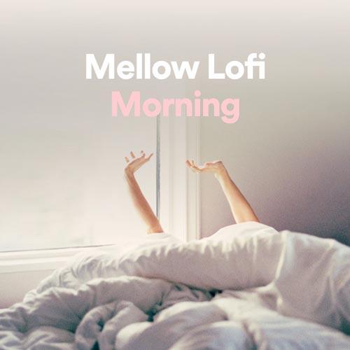 موسیقی لو فای دلپذیر و آرامش بخش برای صبح