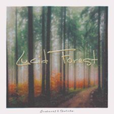 جنگل شفاف ، موسیقی لو فای آرامش بخش اثری از اونهارت