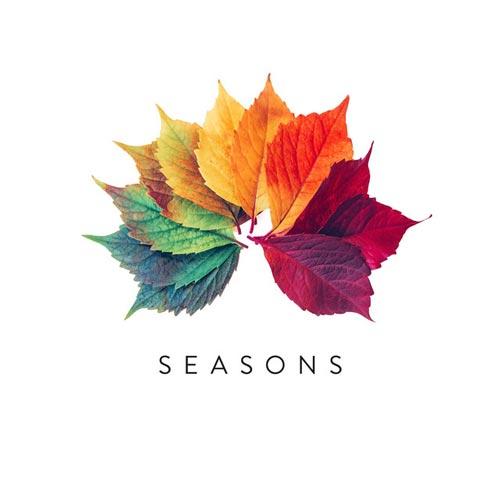 فصل ها ، موسیقی پیانو الهام بخش از سایمون وستر