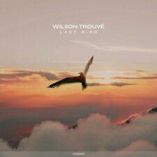 آخرین پرنده ، پیانو آرامش بخش از ویلسون ترو