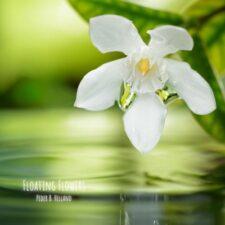گلهای شناور – پدر بی. هلاند